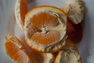 Orange Photo Didier Laget
