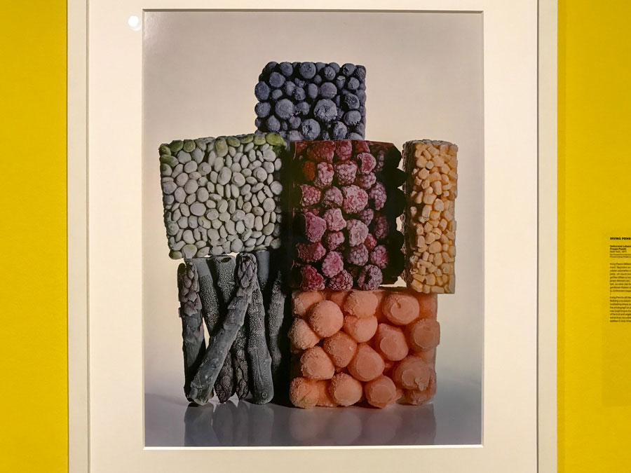 Irving Penn - frozen food - Photo Didier Laget