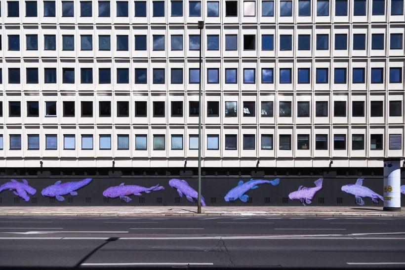 Karl-Addison-14-Tails - photo Didier Laget
