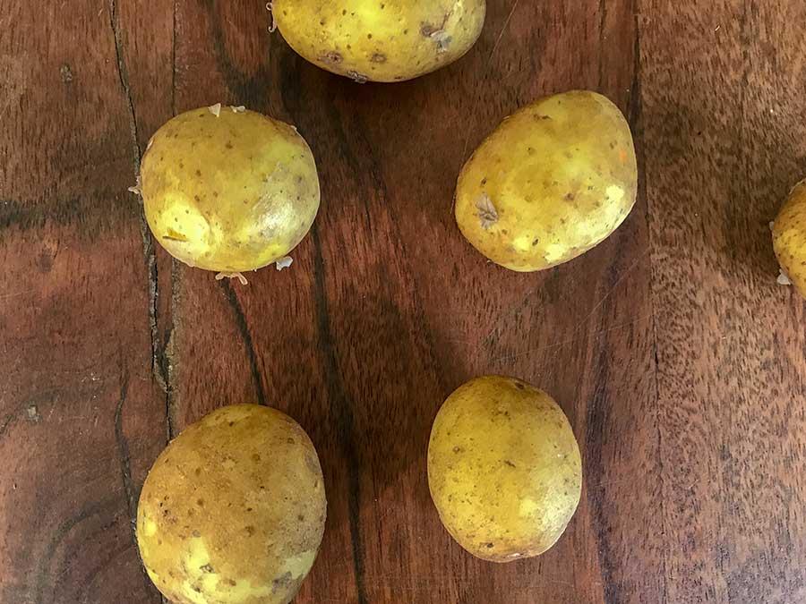 Plusieurs pommes de terre de Samsø