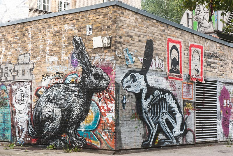 Roa A berlin - Photo copyright Didier Laget