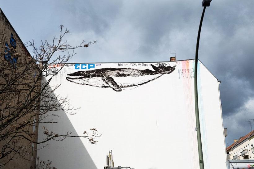 Baleine sur un mur- photo Didier Laget