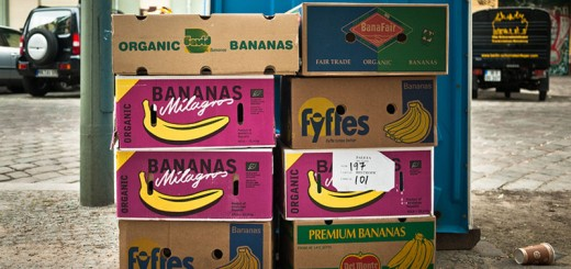 Cartin de bananes - Photo Didier Laget
