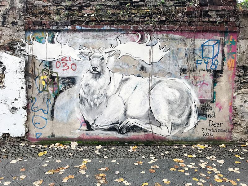 Cerf graffiti - Photo Didier Laget