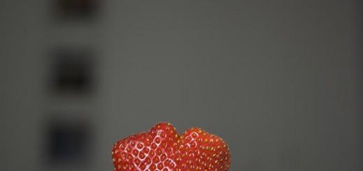 fraise A berlin - Photo copyright Didier Laget