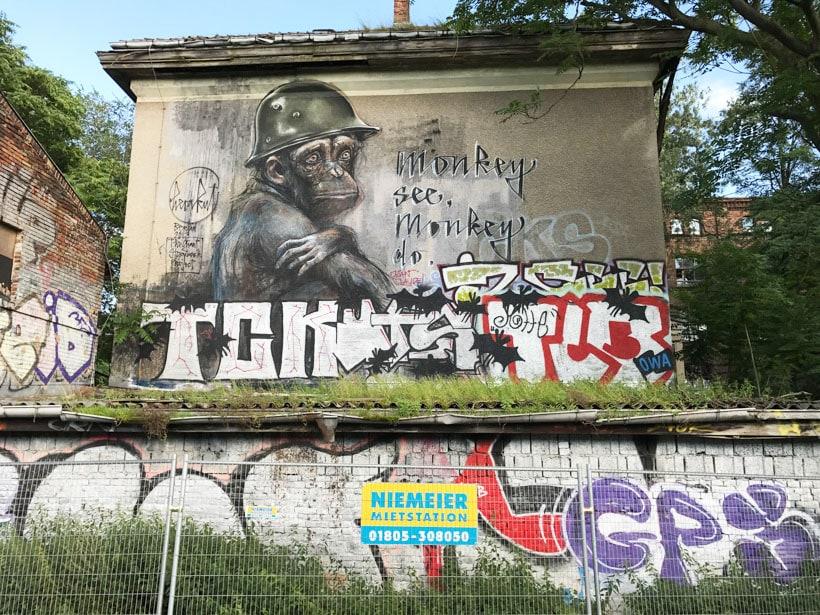 Monkey Do - Photo Didier laget
