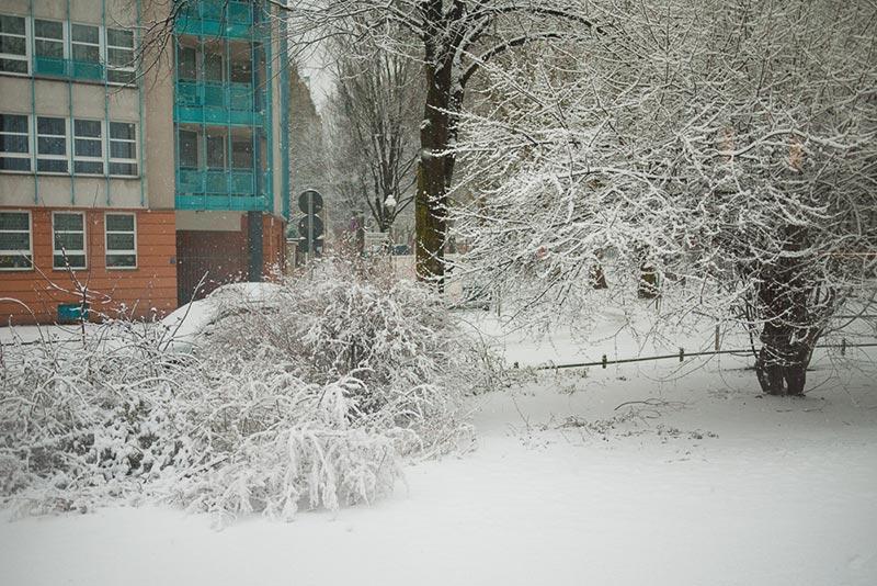neige-a-neukoelln A berlin - Photo copyright Didier Laget