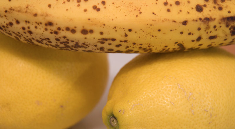 oranges-bananes A berlin - Photo copyright Didier Laget