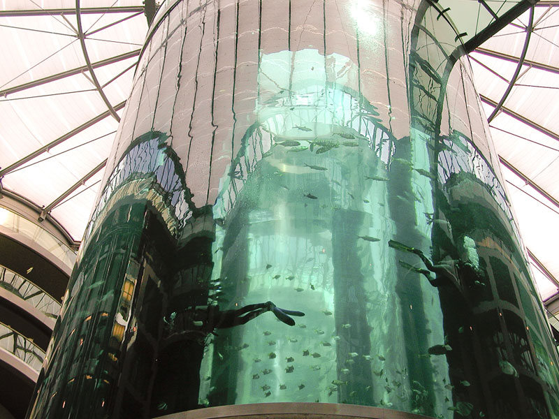 radisson-aquarium-A berlin - Photo copyright Didier Laget